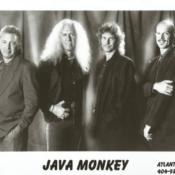 Java Monkey promo