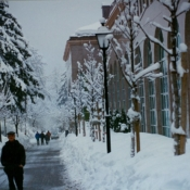 Swiss Village snow scene